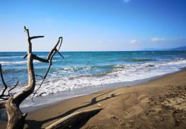 spiaggia, marina di grosseto, toscana, italia, qui.press. maria cristina mancini